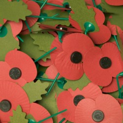 Armistice Day and Remembrance Sunday 2019